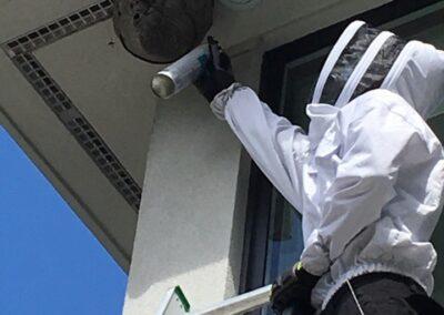 House Pest Control