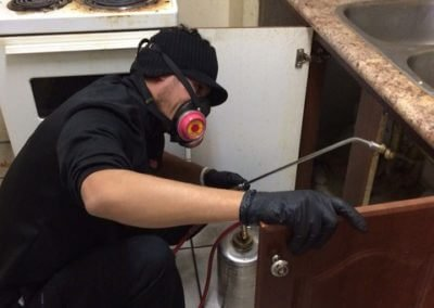 Under Kitchen Sink Exterminating