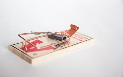 How to set up a Mousetrap