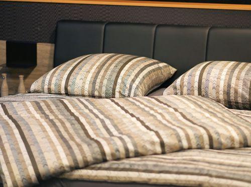 Bed bug treatment Toronto