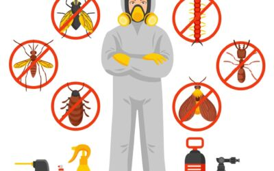 Big Benefits of Hiring Pest Control Professional in Toronto